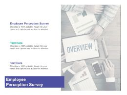 Employee Perception Survey Ppt Powerpoint Presentation Model File Cpb