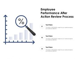 Employee Performance After Action Review Process