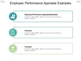 Employee Performance Appraisal Examples Ppt Powerpoint Presentation Outline Cpb