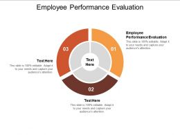 Employee Performance Evaluation Ppt Powerpoint Presentation Show Graphics Example Cpb