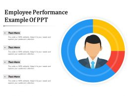 Employee Performance Example Of Ppt