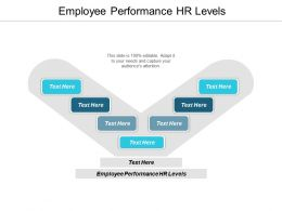 Employee Performance Hr Levels Ppt Powerpoint Presentation Example Cpb