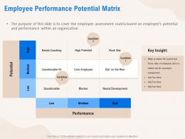 Employee Performance Potential Matrix Development Ppt Powerpoint Presentation Infographics Example