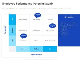 Employee Performance Potential Matrix Ppt Powerpoint Presentation Infographic