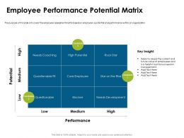 Employee Performance Potential Matrix Succession Ppt Powerpoint Presentation Styles Objects