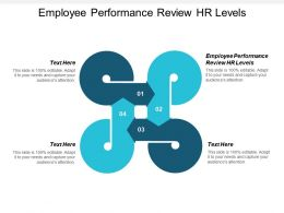 Employee Performance Review Hr Levels Ppt Powerpoint Presentation Portfolio Cpb