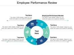 Employee Performance Review Ppt Powerpoint Presentation Summary Designs Cpb