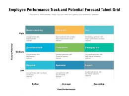 Employee Performance Track And Potential Forecast Talent Grid