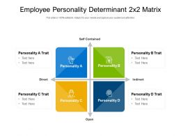 Employee Personality Determinant 2x2 Matrix