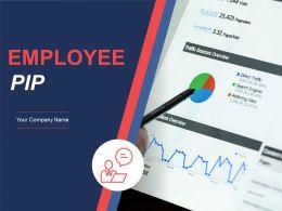 Employee Pip Powerpoint Presentation Slides