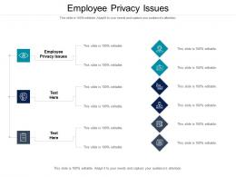 Employee Privacy Issues Ppt Powerpoint Presentation Portfolio Layout Cpb