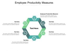 Employee Productivity Measures Ppt Powerpoint Presentation Show Ideas Cpb