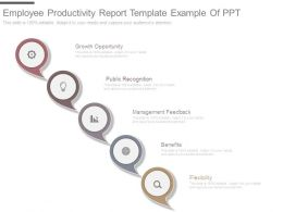 Employee Productivity Report Template Example Of Ppt