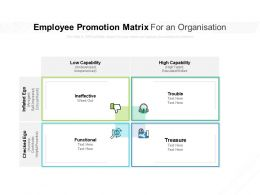 Employee Promotion Matrix For An Organisation