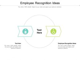 Employee Recognition Ideas Ppt Powerpoint Presentation Icon Cpb