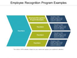 Employee Recognition Program Examples Ppt Powerpoint Presentation Gallery Display Cpb