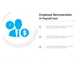 Employee Remuneration In Payroll Icon