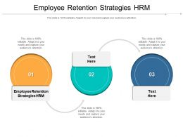 Employee Retention Strategies HRM Ppt Powerpoint Presentation Ideas Topics Cpb