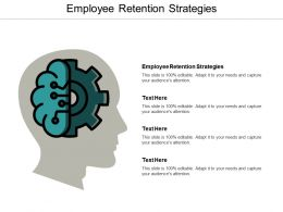 Employee Retention Strategies Ppt Powerpoint Presentation Ideas Graphics Cpb