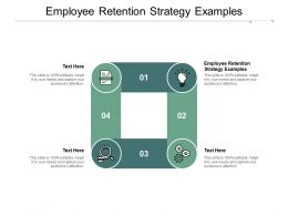 Employee Retention Strategy Examples Ppt Powerpoint Presentation Portfolio Visual Aids Cpb