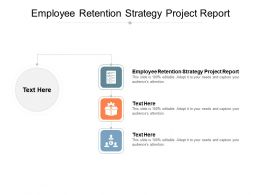 Employee Retention Strategy Project Report Ppt Powerpoint Presentation Styles Graphics Pictures Cpb