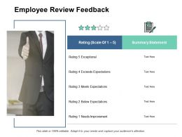 Employee Review Feedback Scale Ppt Powerpoint Presentation Pictures Professional