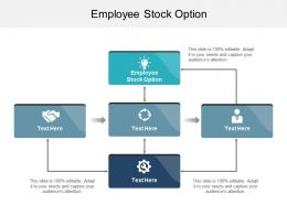 Employee Stock Option Ppt Powerpoint Presentation Infographic Template Infographic Cpb