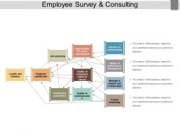 Employee Survey And Consulting Powerpoint Show