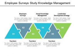 Employee Surveys Study Knowledge Management Leadership Development Strategy Cpb