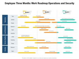 Employee Three Months Work Roadmap Operations And Security