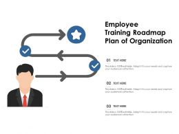 Employee Training Roadmap Plan Of Organisation