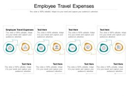Employee Travel Expenses Ppt Powerpoint Presentation Visual Aids Cpb