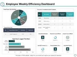 Employee Weekly Efficiency Dashboard Ppt Powerpoint Presentation Gallery Styles