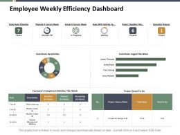 Employee Weekly Efficiency Dashboard Ppt Styles Graphic Images