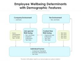 Employee Wellbeing Determinants With Demographic Features