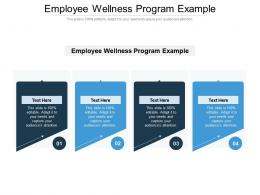 Employee Wellness Program Example Ppt Powerpoint Presentation Gallery Example File Cpb