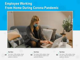 Employee Working From Home During Corona Pandemic