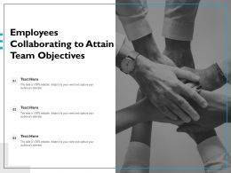 Employees Collaborating To Attain Team Objectives