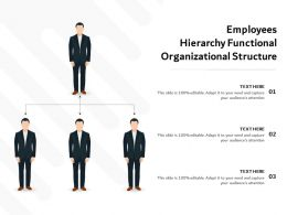 Employees Hierarchy Functional Organizational Structure