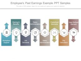 Employees Past Earnings Example Ppt Samples