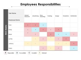 Employees Responsibilities Ppt Powerpoint Presentation Professional Graphics Example