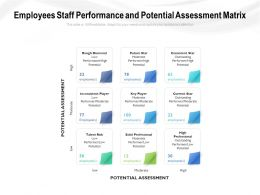 Employees Staff Performance And Potential Assessment Matrix