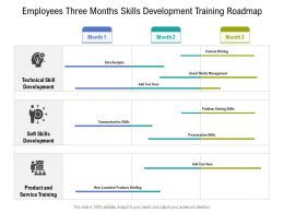 Employees Three Months Skills Development Training Roadmap