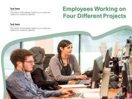 Employees Working On Four Different Projects