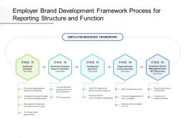 Employer Brand Development Framework Process For Reporting Structure And Function