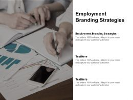 Employment Branding Strategies Ppt Powerpoint Presentation Ideas Visuals Cpb