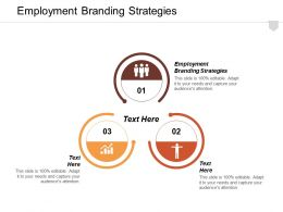 Employment Branding Strategies Ppt Powerpoint Presentation Infographic Template Show Cpb