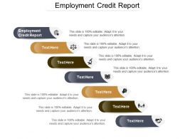 Employment Credit Report Ppt Powerpoint Presentation Gallery Background Designs Cpb