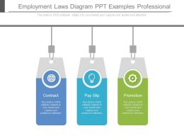 Employment Laws Diagram Ppt Examples Professional