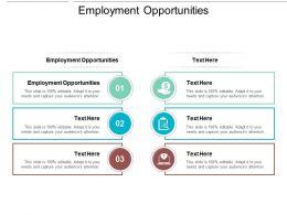 Employment Opportunities Ppt Powerpoint Presentation Ideas Show Cpb